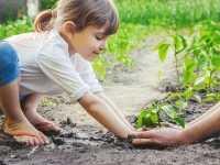 Aula de Educação Ambiental